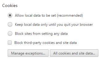 Параметр «Разрешать сохранение локальных данных», отмеченный галочкой