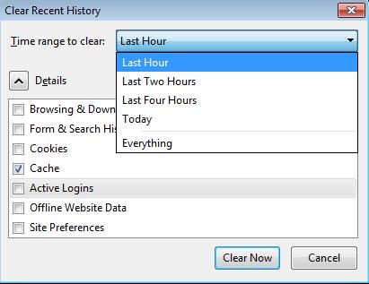 Пункт «Cache», отмеченный галочкой, и список периодов для очистки